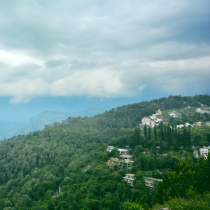 Yercaud – explore the coffee estates and cave temple