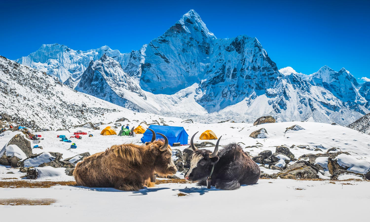 Nepal tour with lepassage to india