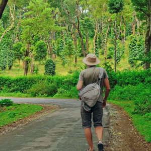 Enjoy the coffee and uneven terrains of Coorg